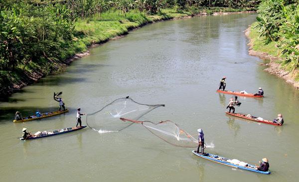 Aktivitas inventarisasi ikan sungai oleh Ecoton dalam Arung Brantas 2013. Foto: Ecoton