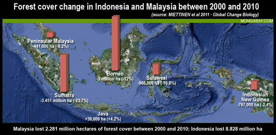 SEASIA-forest-cover-change568