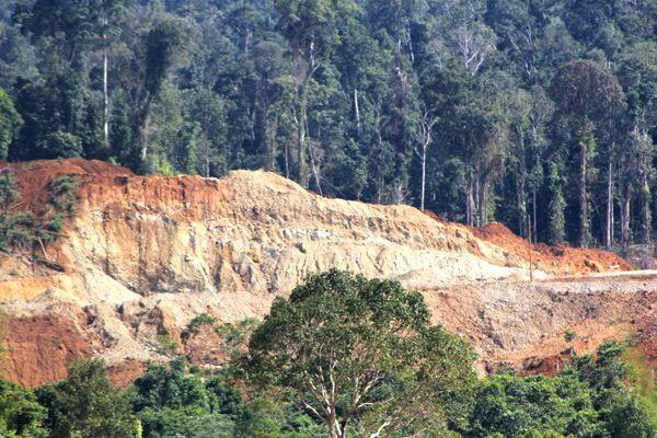 Inilah Cagar Alam Morowali, hutan konservasi tetapi dibabat tambang dan ditinggal begitu saja. Siapa yang akan memulihkan kembali kondisi ini? Foto: Jatam Sulteng