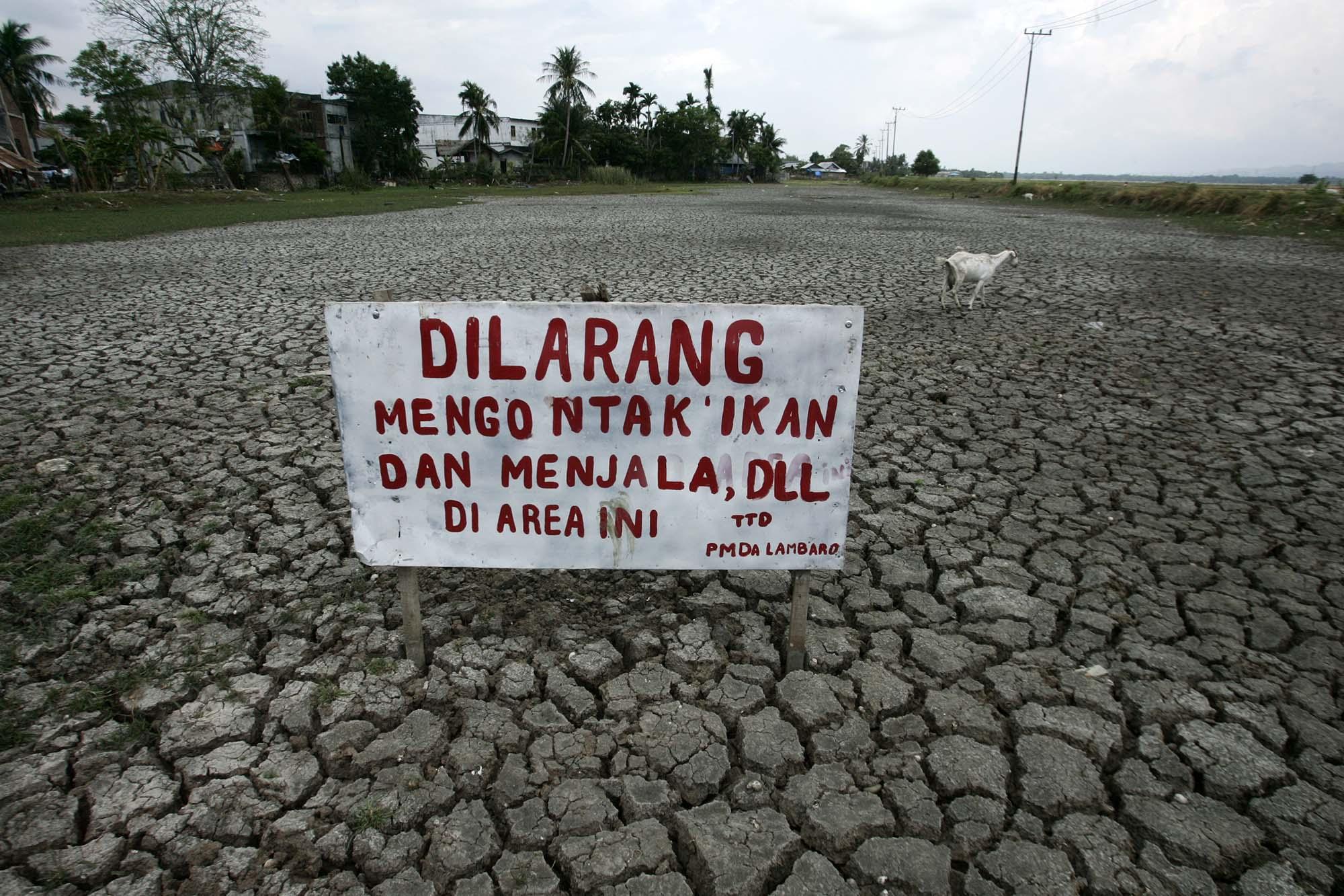Kolam ikan di Kecamatan Ingin Jaya, Kabupaten Aceh Besar, ini kering akibat kemarau panjang yang melanda Aceh dalam delapan bulan terakhir. Foto: Junaidi Hanafiah.
