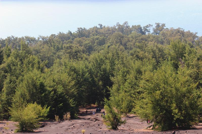 Pemandangan sekitar yang terlihat dari Anak Krakatau. Foto: Rahmadi Rahmad