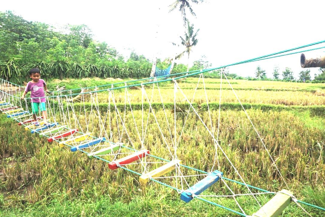 Ekowisata Banyuwangi Menguji Keseriusan Sunrise Of Java Mewujudkan
